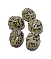 Jaspis - dalmatiini, rumpuhiottu