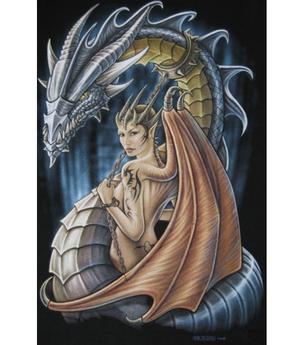 T-shirt - Dragon Fairy