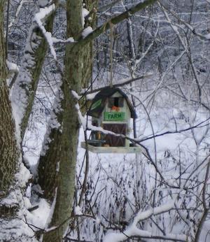 Wood | bird feeder | farm